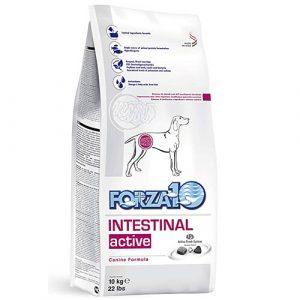 Forza10 veterinarska dieta Intestinal Active