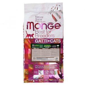 Hrana za maine coon mačke